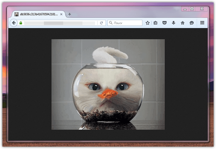View images centered like in Firefox (1)