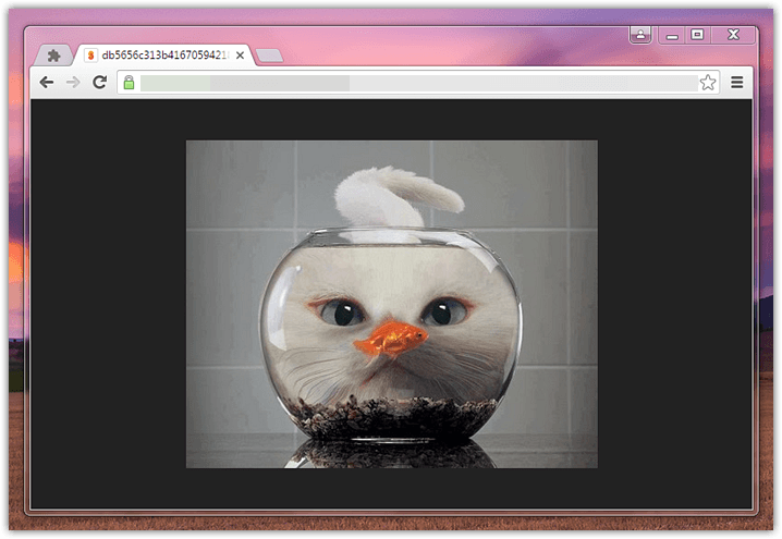 View images centered like in Firefox (3)