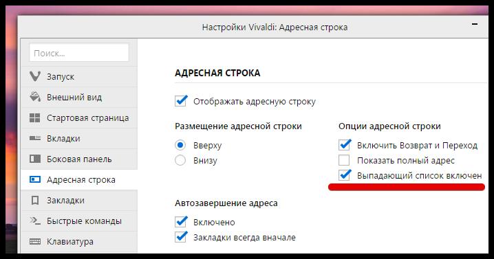 Vivaldi browser 1.1 (6)