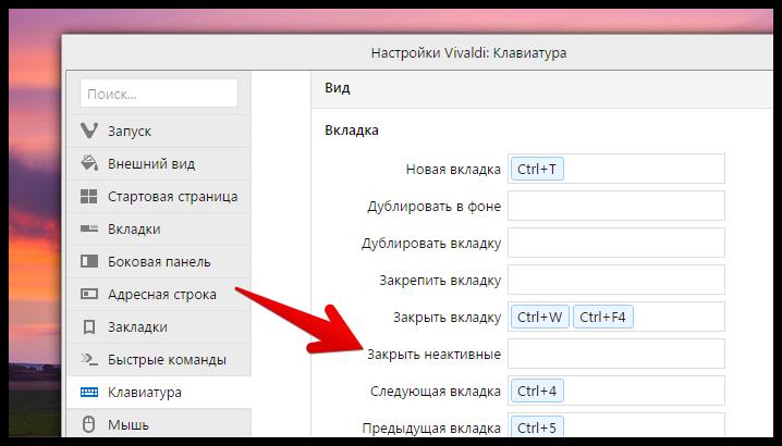 Vivaldi browser 1.1 (7)