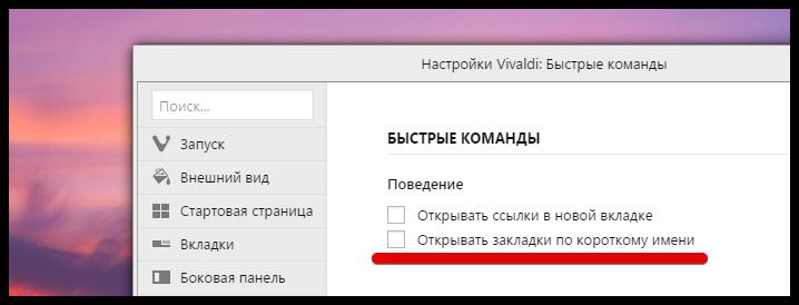 Vivaldi browser 1.2 (5)