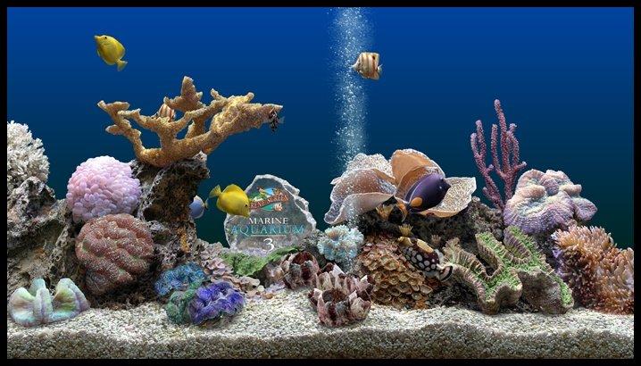 Заставка аквариум с плавающими рыбками
