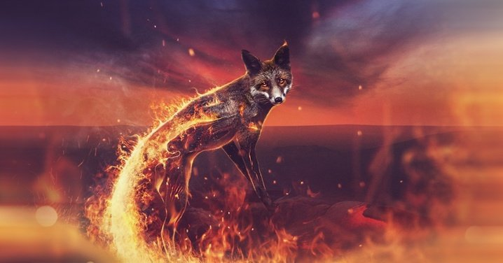 Firefox огненный лис